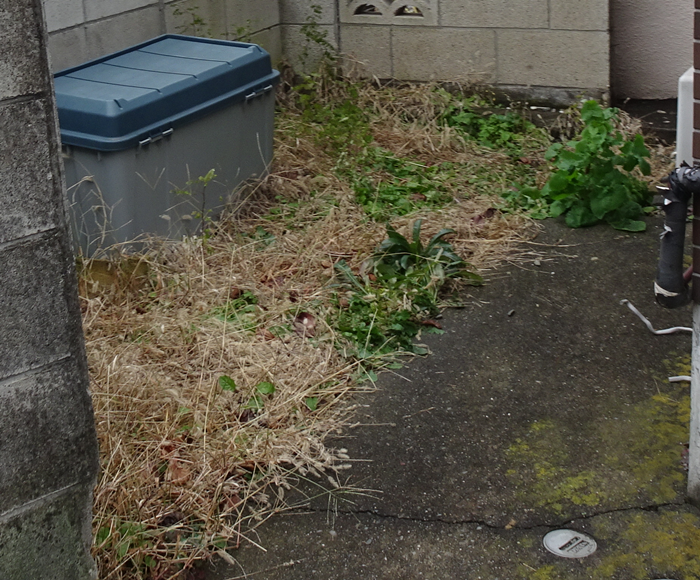 【DIY】ど素人が自転車を駐輪するため、庭をコンクリートでフラットにした手順